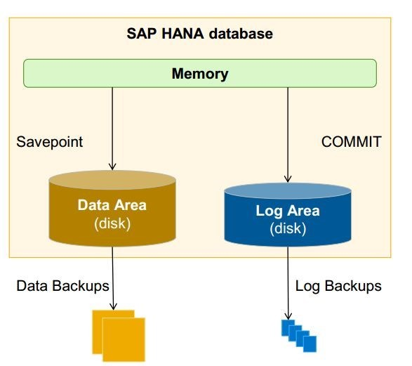 Support Spotlight Backup and File System Maintenance on SAP Business One Version for SAP HANA1