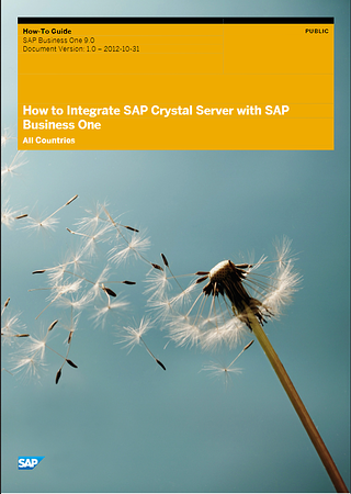 How to integrate Crystal Reports Server