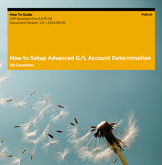 How To Setup and Work with Advanced G/L Account Determination guide