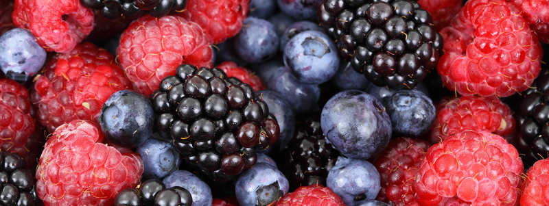 Berries Reducing Food Waste with ERP
