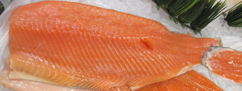 Fish Reducing Food Waste with ERP