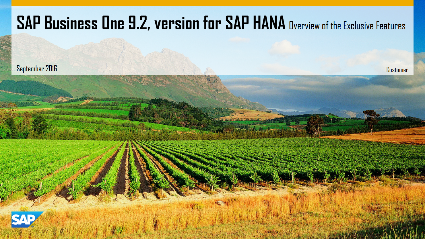 SAP Business One on Hana 9.2 Exclusive Features