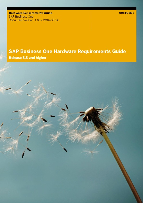 SAP Business One Hardware Requirements Guide