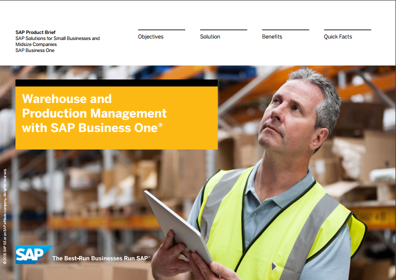 SAP Business One Warehourse and Inventory Management