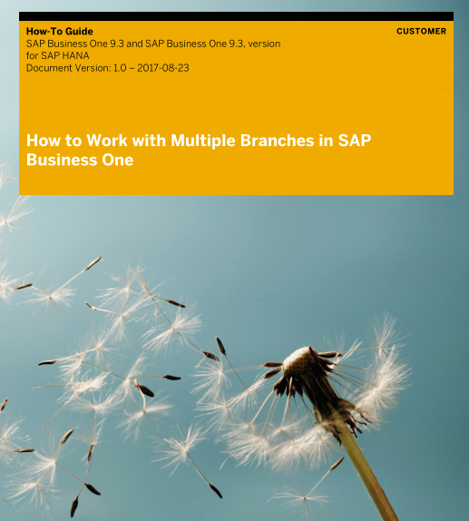 How to Work with Multiple Branches in SAP Business One 9.3