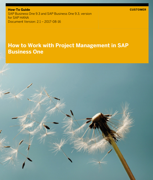 How to Work with Project Management in SAP Business One 9.3