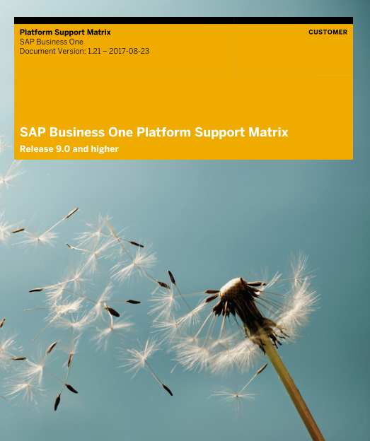 Platform Support Matrix for SAP Business One